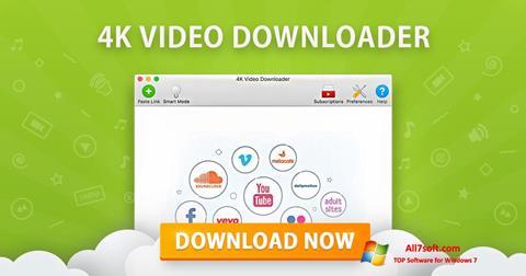 Skjermbilde 4K Video Downloader Windows 7